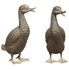 Pair of Vintage Bronze Ducks Standing on Their Palmed Feet, circa 1940
