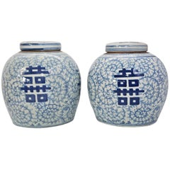 Pair of Vintage Export Porcelain Chinese Ginger Jars