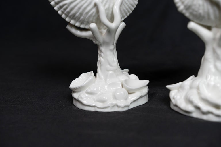 English Pair of White Bone China Royal Worcester Nautilus For Sale