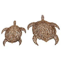 Pair of Woven Basket Turtle Lights