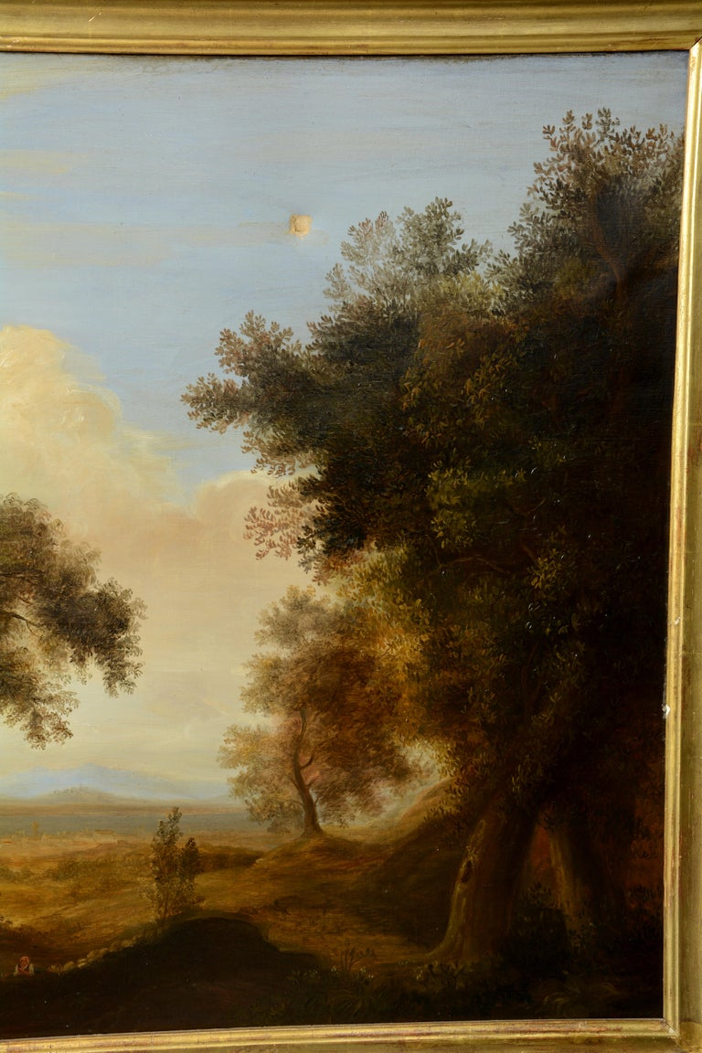 Pair of Xalapa Landscapes, Mexico, Oil on Canvas, Spanish School, circa 1840 For Sale 1