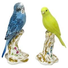 Pair Royal Worcester Bird Figures Yellow Canary Budgerigar Frederick M Gertner