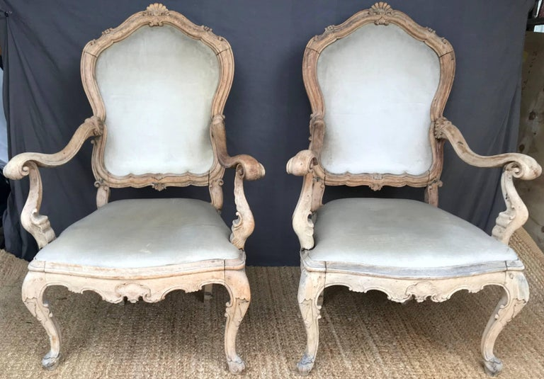 Pair Venetian Louis XV armchairs. Pair exceptional Louis XV large Venetian carved armchairs in original natural bleached condition with vintage naturally faded silk velvet upholstery with shell carved back, out-scrolled arms, apron and legs; very