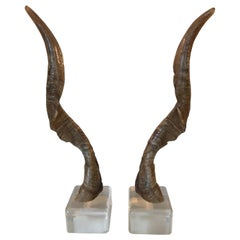 Pair of Vintage Taxidermy Markhor Goat Horns