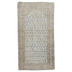 Paisley Malayer Rug in Clear White Blue Brown Hues