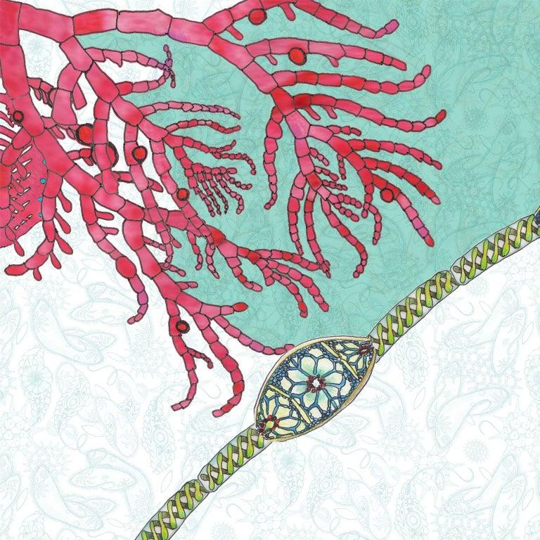 Contemporary Paisley Paramecium Wallpaper in Aqua For Sale