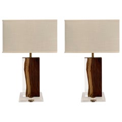 Palissandre and Acrylic Pair Lamps, Indonesia, Contemporary