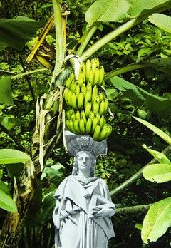 Delirio Exótico #6. Collage from 'Exotic Delirium' series.   Small Print