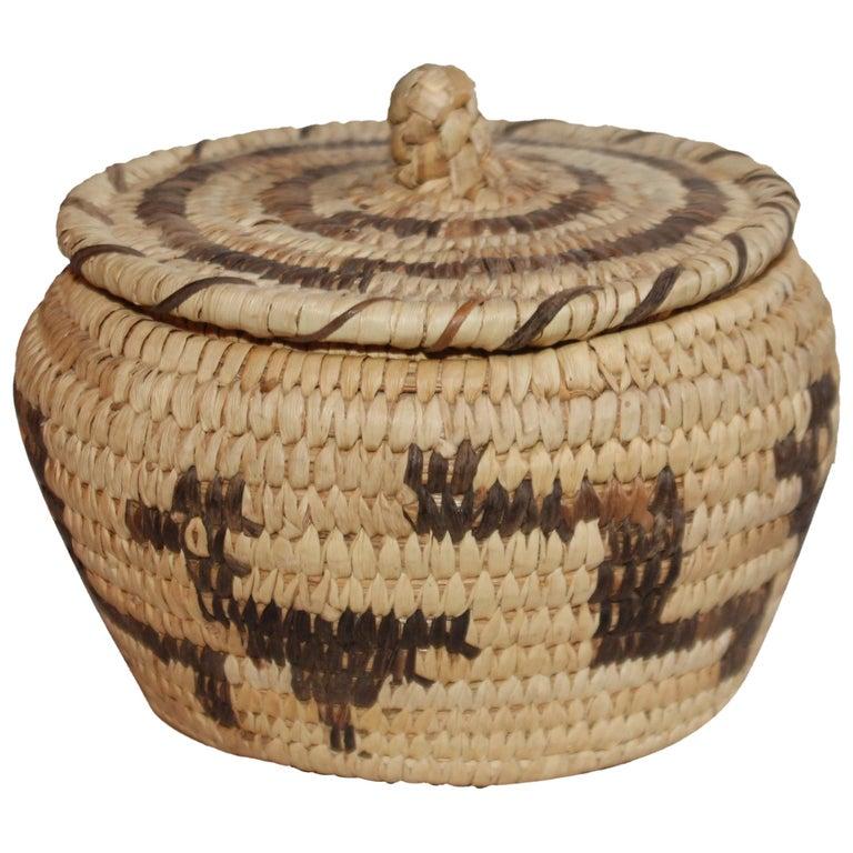 Papago Indian Lidded Basket For Sale