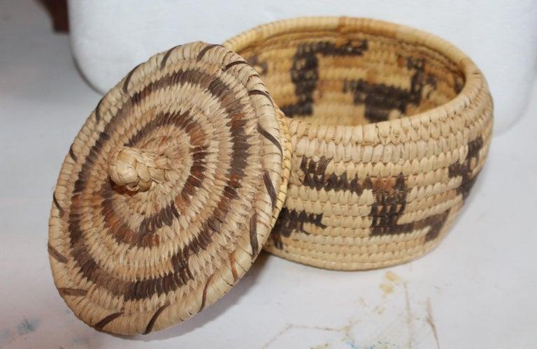 Adirondack Papago Indian Lidded Basket For Sale
