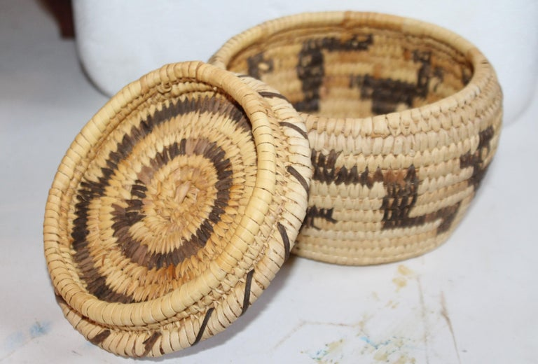 American Papago Indian Lidded Basket For Sale