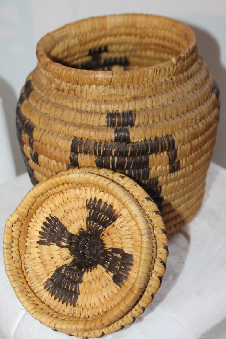 Native American Papago Indian Pictorial Lidded Basket For Sale