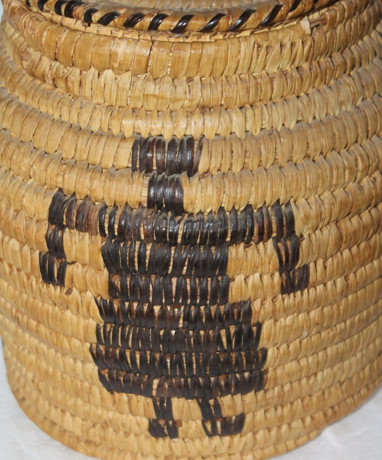 Hand-Crafted Papago Indian Pictorial Lidded Basket For Sale