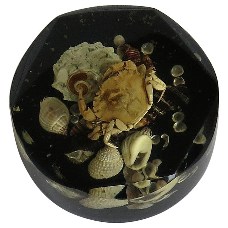 Paperweight with Seashore Theme Handmade with Real Sea Shells & Crab, circa 1970