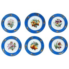 Paris Porcelain Set of Six Botanical and Fruit-Decorated Plates