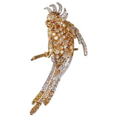 Parrot Diamonds Brooch