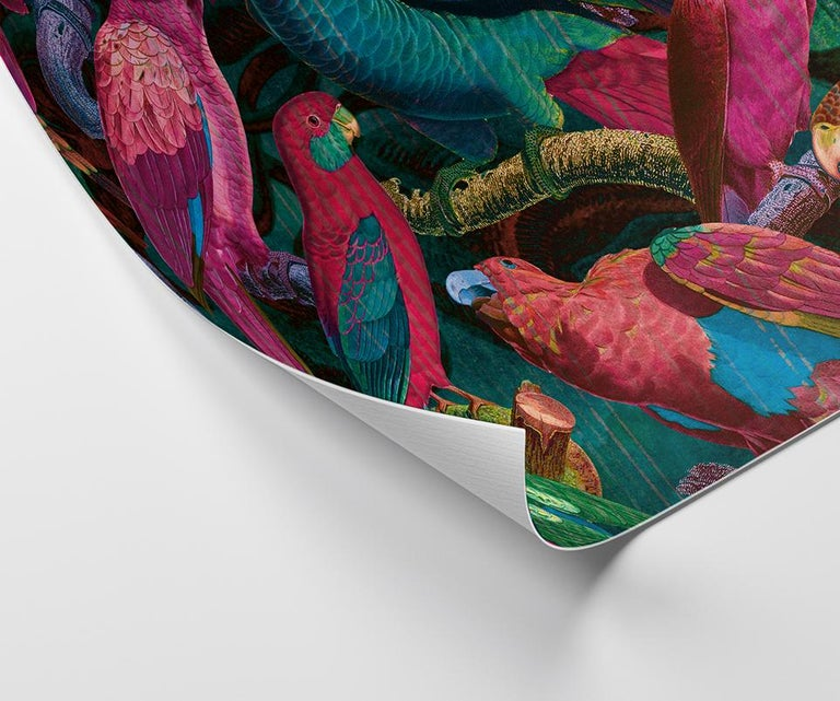 Modern Parrot Imperialis - custom mural wallpaper (fuchsia and blue) For Sale
