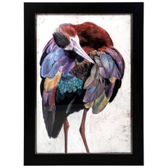 Pastel on Paper of a White Face Ibis