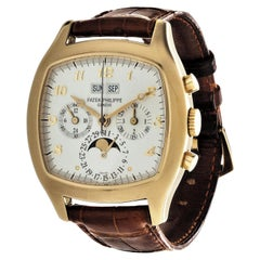 Patek Philippe 5020J Perpetual Calendar Chronograph Watch 'TV Screen'