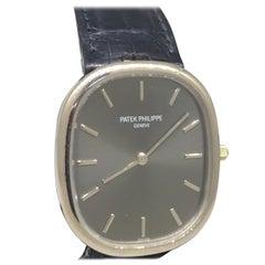 Patek Philippe Ellipse Men's White Gold Automatic Gray Dial Watch 3738/100G
