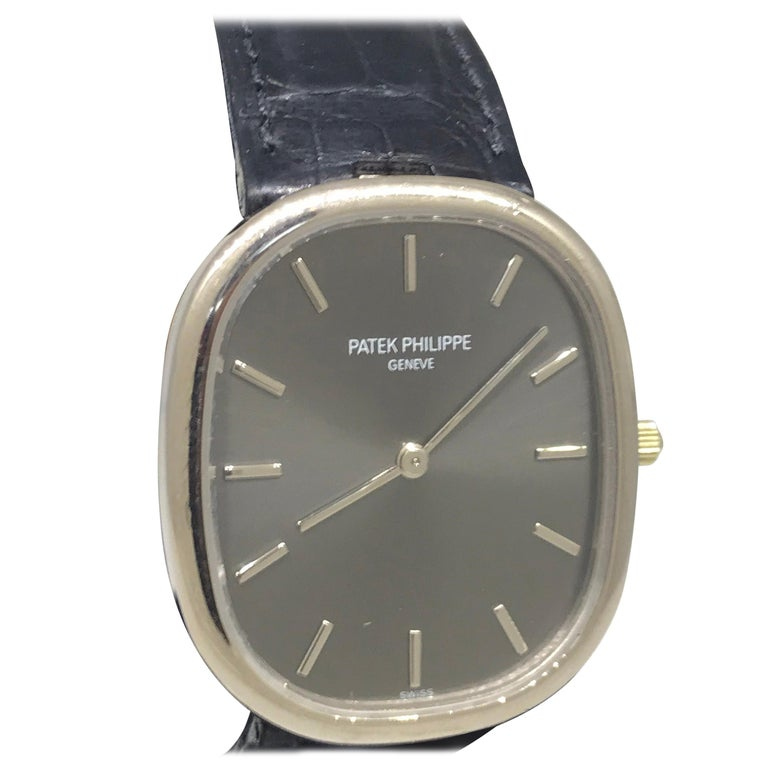 Patek Philippe Ellipse Men's White Gold Automatic Gray Dial Watch 3738/100G For Sale