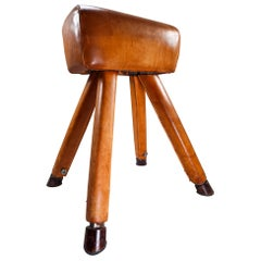 Patinated Cognac Leather Covered Beechwood Gym Horse, 1950s