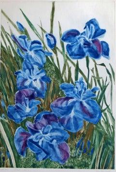 Patricia Tobacco Forrester a la Poupee print – December Irises