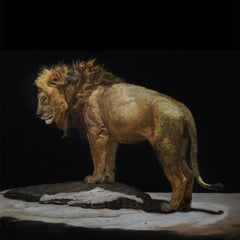 LION STANDING ON A KOPJES, Animal Portrait, Realism, Africa, Tanzania, Dark