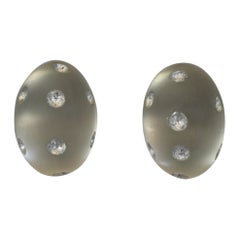 Patricia von Musulin Lucite and Sterling Silver Clip Earrings