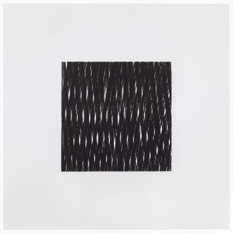 Patrick Carrara Black Ink on Mylar Drawings, Appearance Series, 2013-2015 For Sale 1
