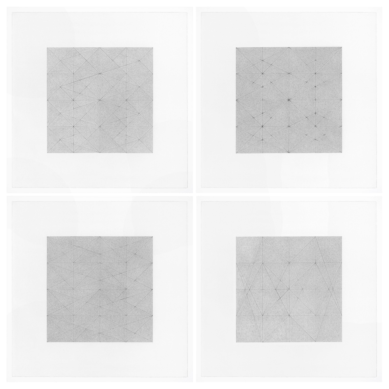 Patrick Carrara Graphite on Magni Drawings, Garden of Silence Series, 2009