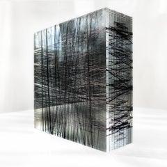 Patrick Carrara, 400 - 600 Yards #7, 2014, Nylon, Thread, Plexiglass?