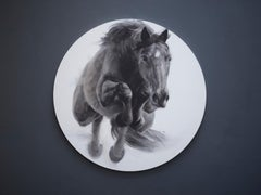 Eclipse, Jumping Horse Drawing, Charcoal, gesso and acrylic on circular board