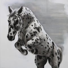 The Mesmerist, Spotted Horse Drawing, Charcoal, gesso and acrylic on wood board