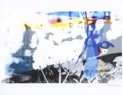 """Fresh Cut Flowers"", digital print, scissors, landscape, blue, black, white"