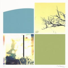 """""""Substance of Form and Landscape"""", abstract, photography, green, blue, yellow"""