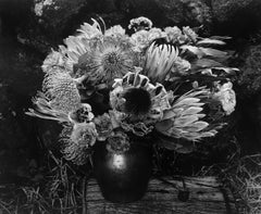 Paul Caponigro, Flower Vase, 1977, gelatin silver print.