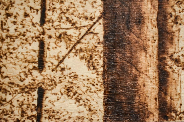 In the Canopy (Intricate Burned and Scorched Forest Landscape on Birch Wood) - Contemporary Mixed Media Art by Paul Chojnowski