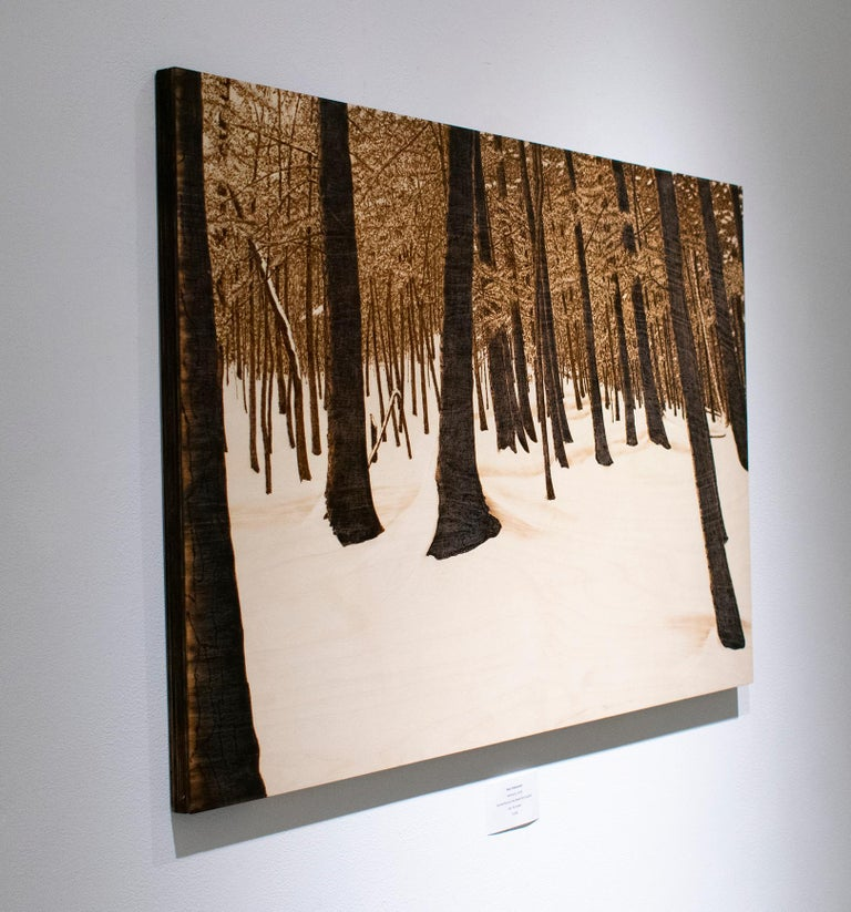 Hemlocks (Snowy Forest Landscape on Birch Wood Made with a Blowtorch) - Contemporary Painting by Paul Chojnowski