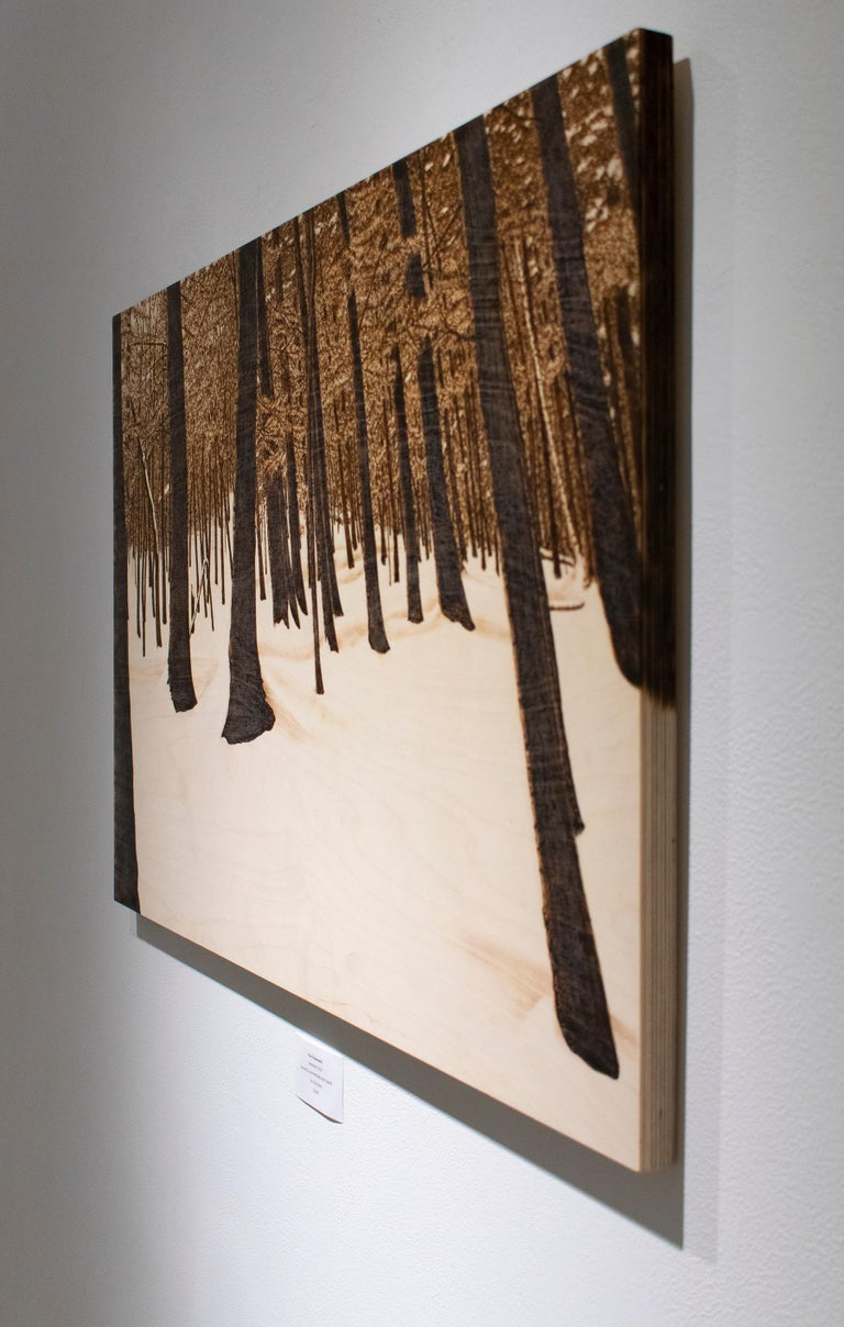 Hemlocks (Snowy Forest Landscape on Birch Wood Made with a Blowtorch) - Brown Landscape Painting by Paul Chojnowski