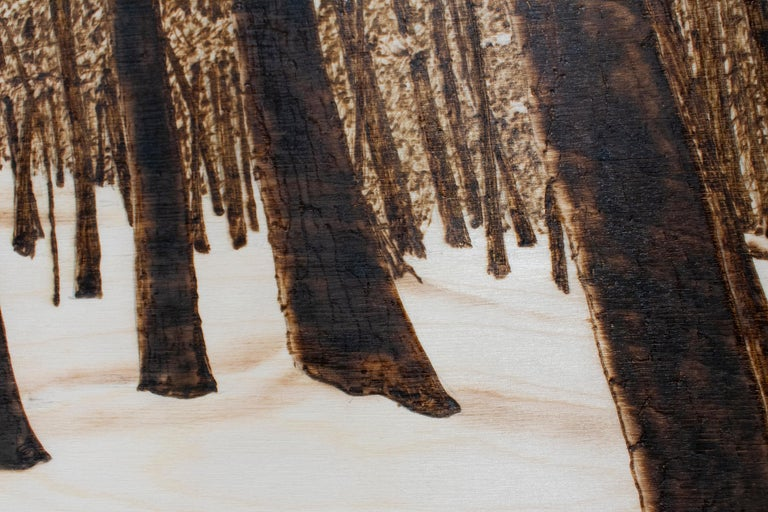 Burned and scorched drawing on Baltic Birch panel of a Birch forest and snowy landscape Made with a small blowtorch, naturally sepia toned  24 x 36 inches unframed The sides are burned a dark umber so framing is not necessary Ready to hang as