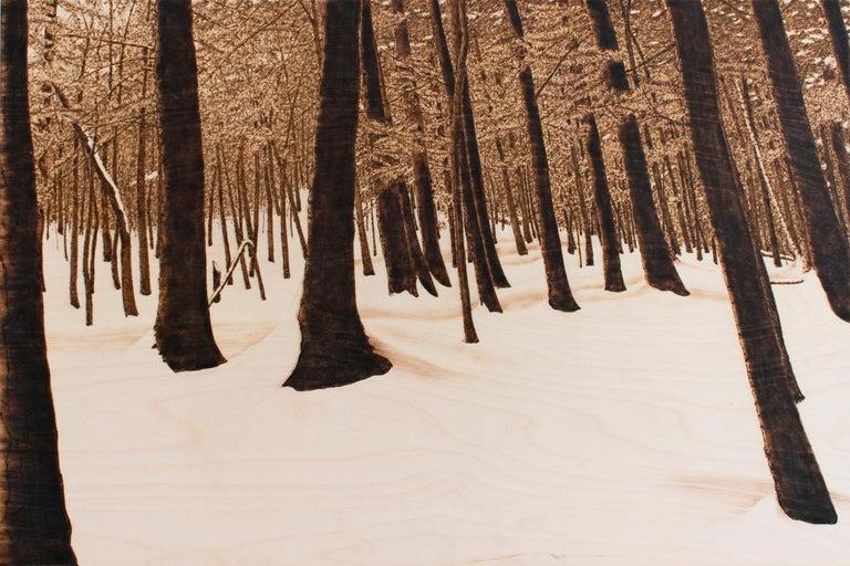 Paul Chojnowski Landscape Painting - Hemlocks (Snowy Forest Landscape on Birch Wood Made with a Blowtorch)
