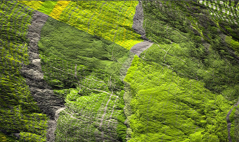 Digital Clift - Green Forest Aerial View - Contemporary Photograph by Paul-Émile Rioux