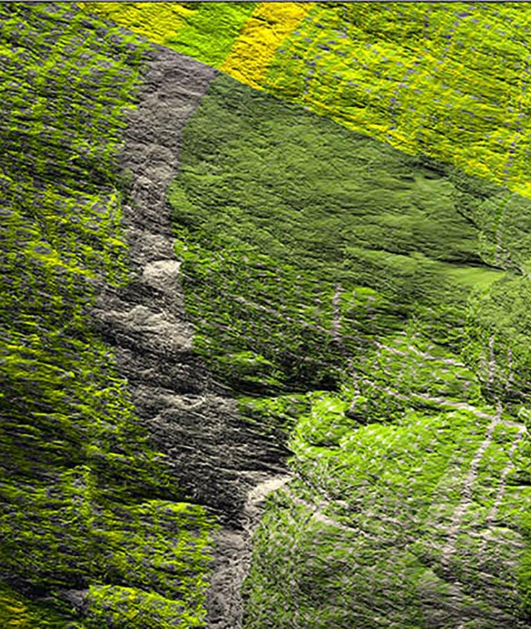 Digital Clift - Green Forest Aerial View For Sale 1