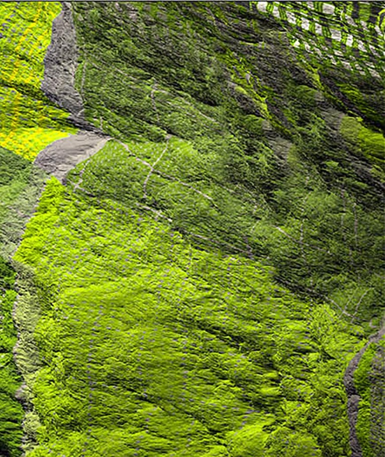 Digital Clift - Green Forest Aerial View For Sale 2