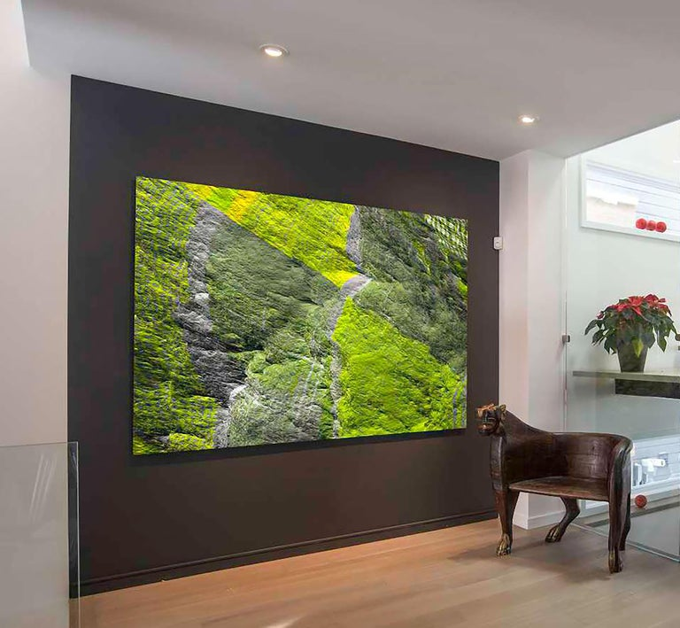 Digital Clift - Green Forest Aerial View For Sale 3