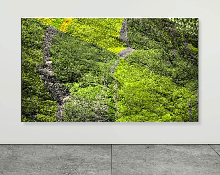 Paul-Émile Rioux Landscape Photograph - Digital Clift - Green Forest Aerial View