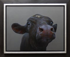 """""""Black Calf"""" Contemporary Dutch Oil Painting of a Cow"""