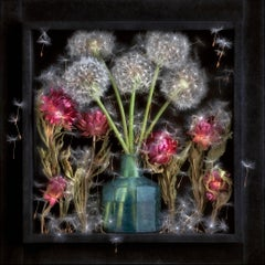 Motion Without Gesture III: Limited Edition Still Life Photograph by Paul Knight