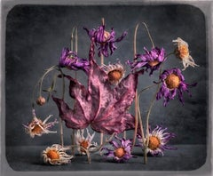 Stage Whispers (The Chain): Limited Edition Still Life Photograph by Paul Knight